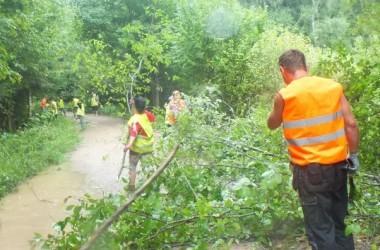 Utenos rajono savivaldybės Utenos seniūnijos bendruomenės iniciatyva