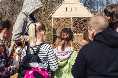 Namelių vabzdžiams gamyba su Klaipėdos miesto šeimos ir vaiko gerovės centro vaikais